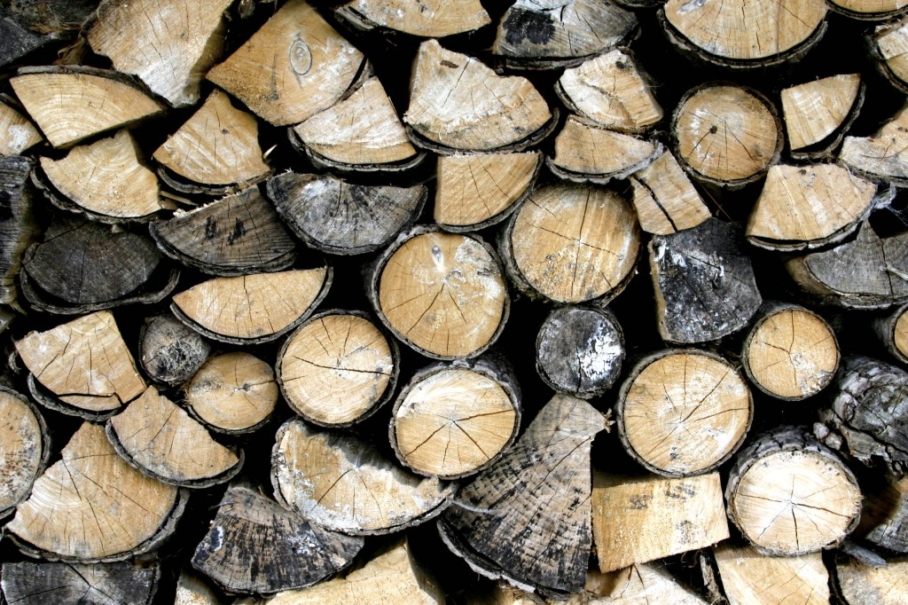 Wood cut from trees at Mill on the Brue